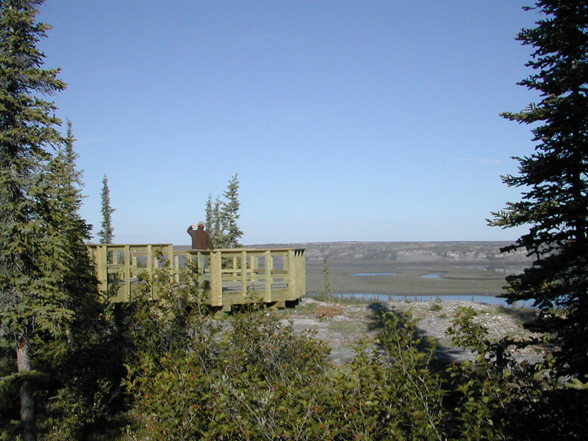 view from gwich territorial park