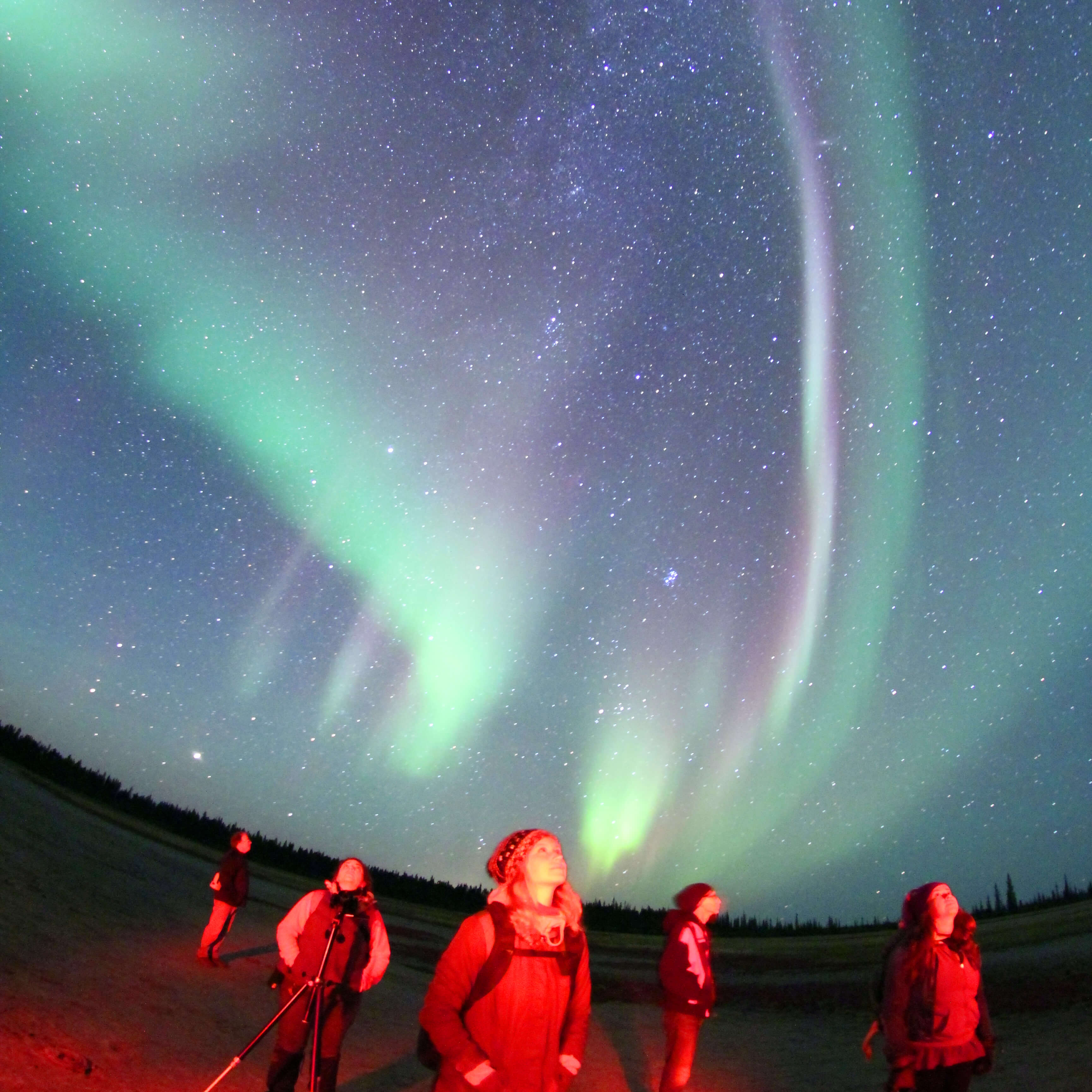 Aurora watchers enjoying spectacular aurora show overhead