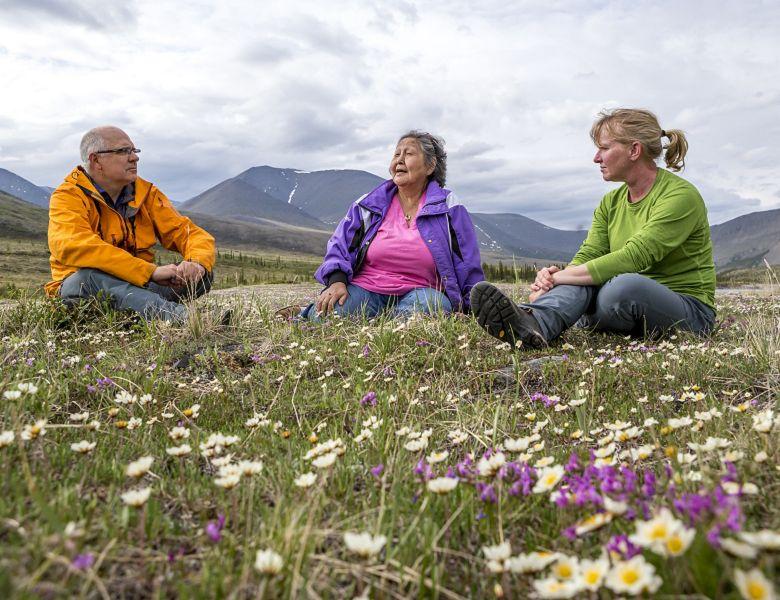 People sitting in field