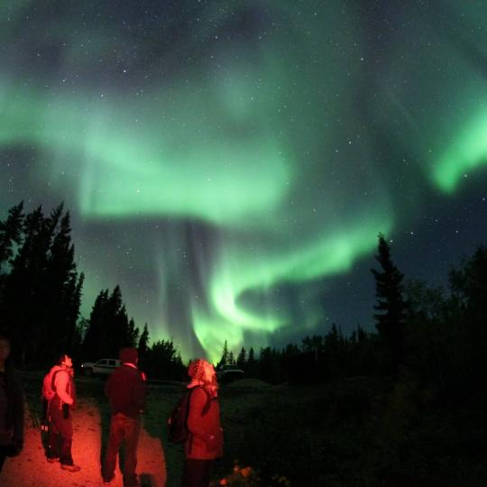 Tourists gazing up at dancing Aurora in Fort Smith in the NWT