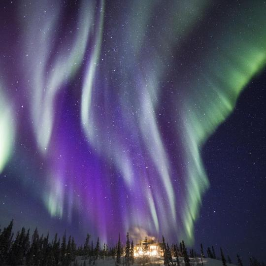 purple and green northern lights in the northwest territories