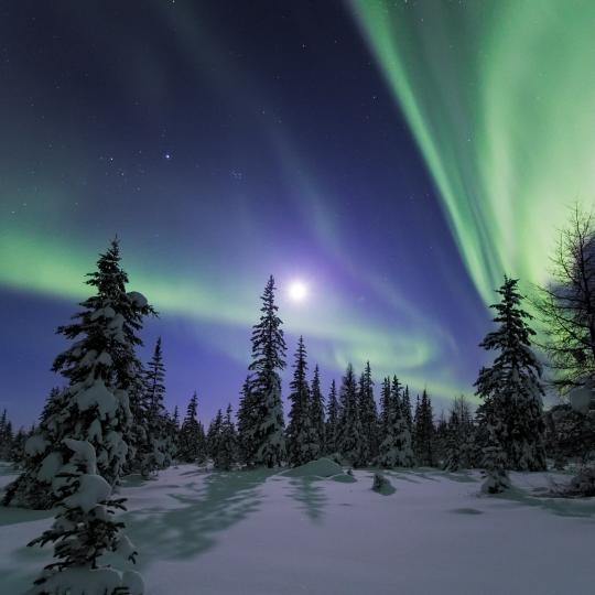 The Aurora dances in the night sky in the Northwest Territories