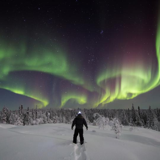 A person walking on a trail in the snow under the Northern Lights