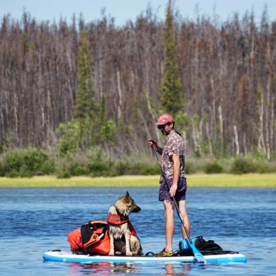 Charles the dog and his owner on a stand up paddleboard in the Northwest Territories