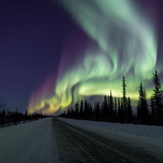 The Northern lights dance in the sky in the Northwest Territories