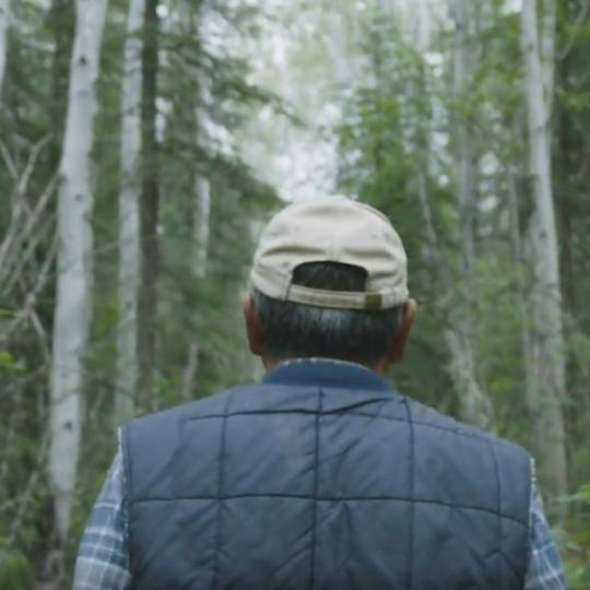 A man dressed in a cap and vest facing a birch wood forest in Fort Simpson NWT.