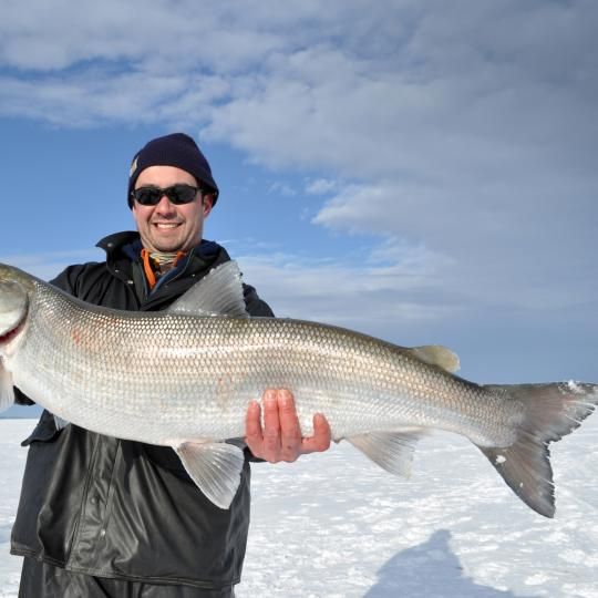 man with large Inconnu king coney winter ice fishing