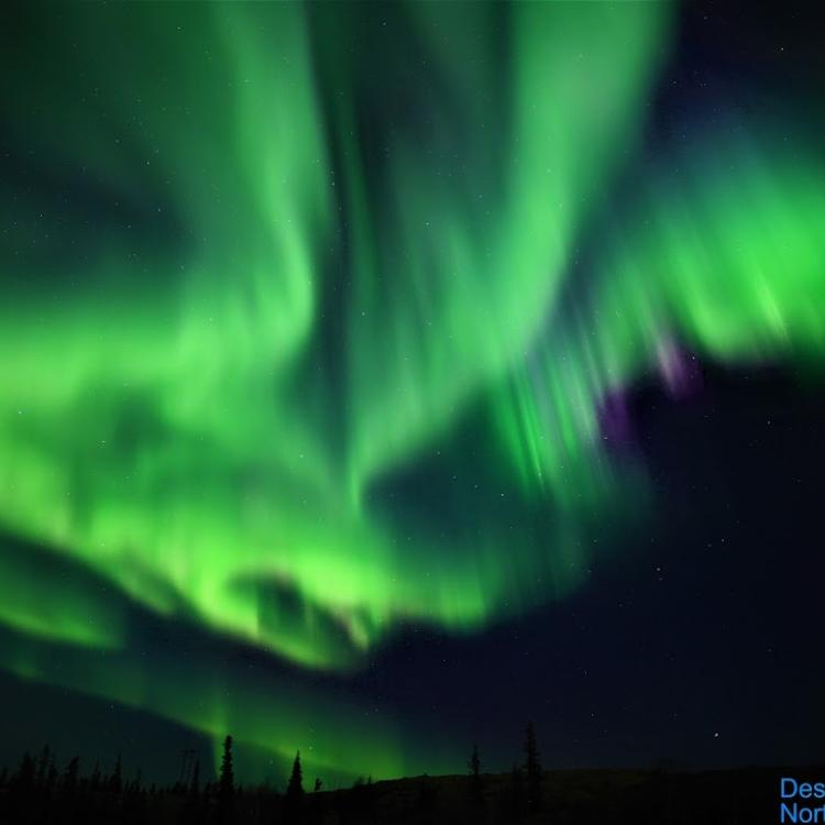 Destination NWT the green aurora blazing across the dark sky in Yellowknife, NWT.