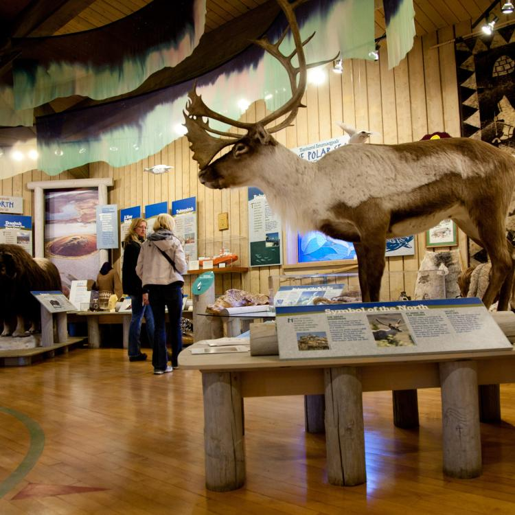 Western Arctic Visitor Information Centre interior
