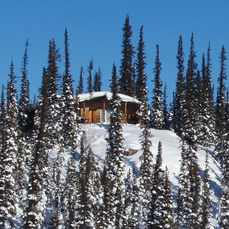 The Arctic Chalet Loon Chalet on a snowy hill surrounded by trees in Inuvik Northwest Territories.