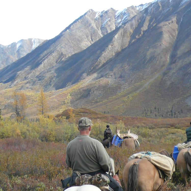 Hunters on horseback in the Mackenzie mountains with Ram Head Outfitters hunting big game in the Dehcho region in the NWT.