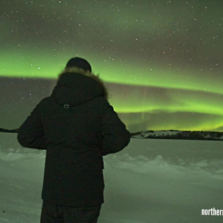 Northern Star Tourism Services guest in black parka facing the green dancing aurora ahead in Yellowknife, NT.