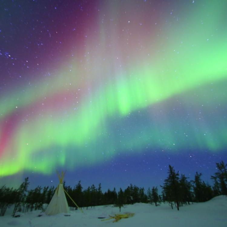 Yellowknife Tours Spectacular Aurora green and purple in the sky in the NWT.