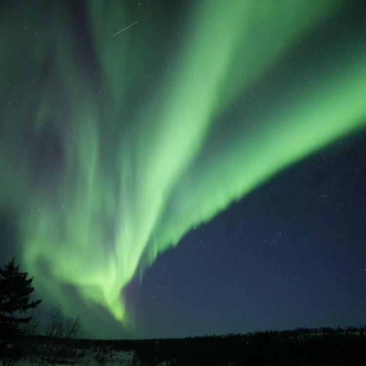 Green aurora shooting across the dark Yellowknife sky picture by Aurora Dream tours.