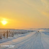 Nature Tours of Yukon - Arctic Discovery Tour - Northwest Territories -Traffic on the Dempster Highway