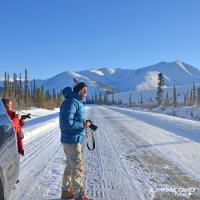 Nature Tours of Yukon - Arctic Winter Road - Dempster Highway