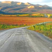 Nature Tours of Yukon - Arctic Road Trip - Dempster Highway