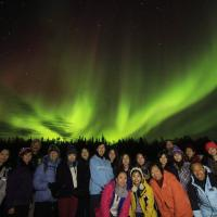 North Star Adventures large group of tourists under the pink and green northern lights in Yellowknife, NWT.