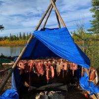 Traditional fish drying demonstration by North Star Adventures