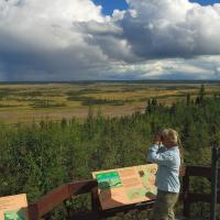 A woman looking at a viewpoint in Wood Buffalo Park.