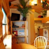 A sunny day inside a Whispering pines cottage with a small TV and plants in Fort Smith, NWT.