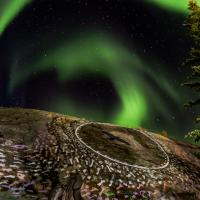 Aurora over a hill in Yellowknife's Old town in the Northwest Territories