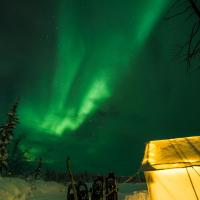 The green aurora in the sky and tourists walking on a trail on a Yellowknife Online northern lights tour in the NWT.