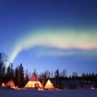 Aurora Village teepees in the fall with the green dancing aurora in the sky.