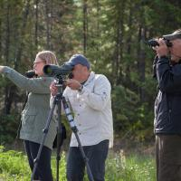 Wildlife Viewing with My Backyard Tours man looking through a binocular in Yellowknife in the Northwest Territories.