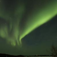 North of 60 Adventures green dancing aurora in the dark sky in the NWT.