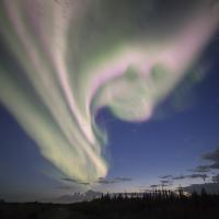Green aurora northern lights dancing in the night sky in Yellowknife, Northwest Territories, Canada.