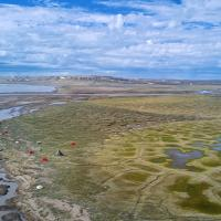The vast landscape of the Thomsen River in the Northwest Territories - Black Feather