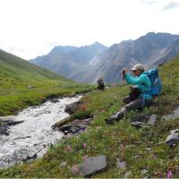 A woman in a blue jacket seated and taking nature shots on a Nahanni Heli Adventure in the Nahanni National Park, NWT.