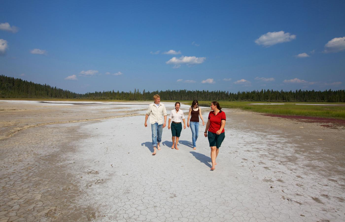 The surreal Salt Plains in Wood Buffalo National Park outside of Fort Smith, Northwest Territories, Canada