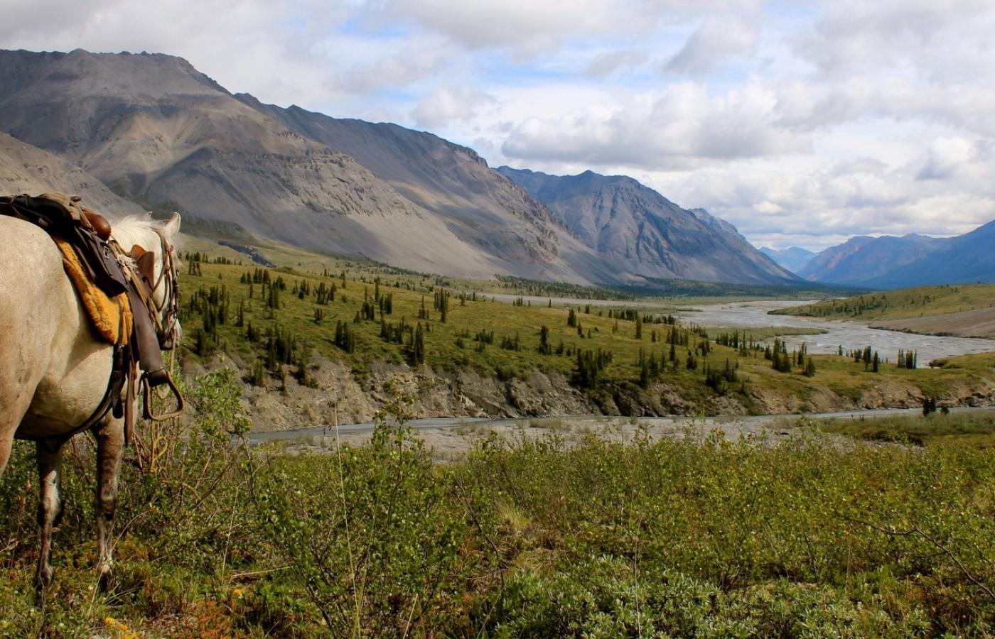 guided hunt in the Mackenzie Mountains of the NWT
