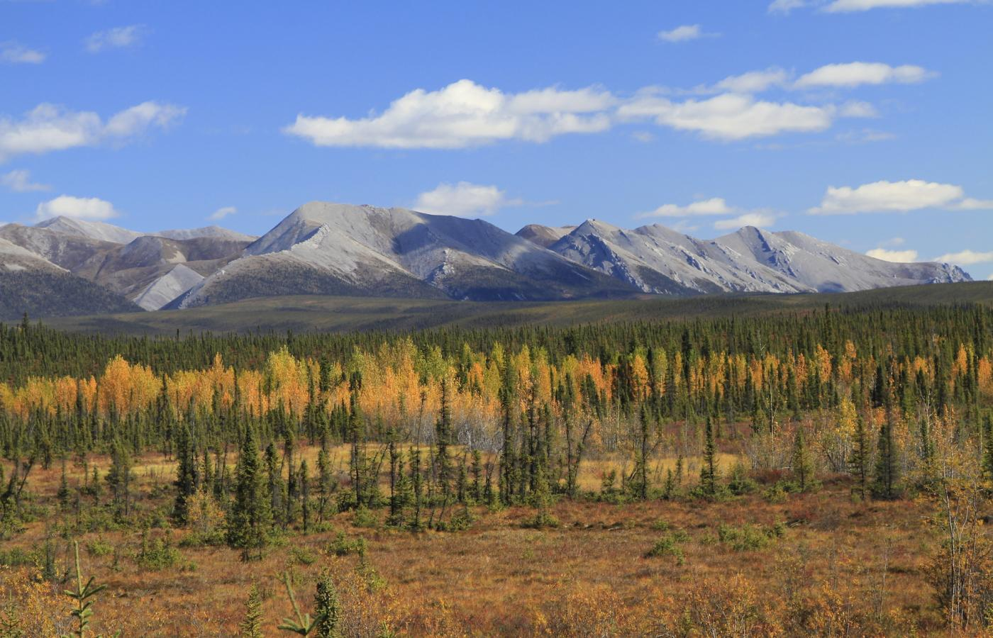 Northwest Territories landscape on a road trip driving the Dempster Highway in the fall season