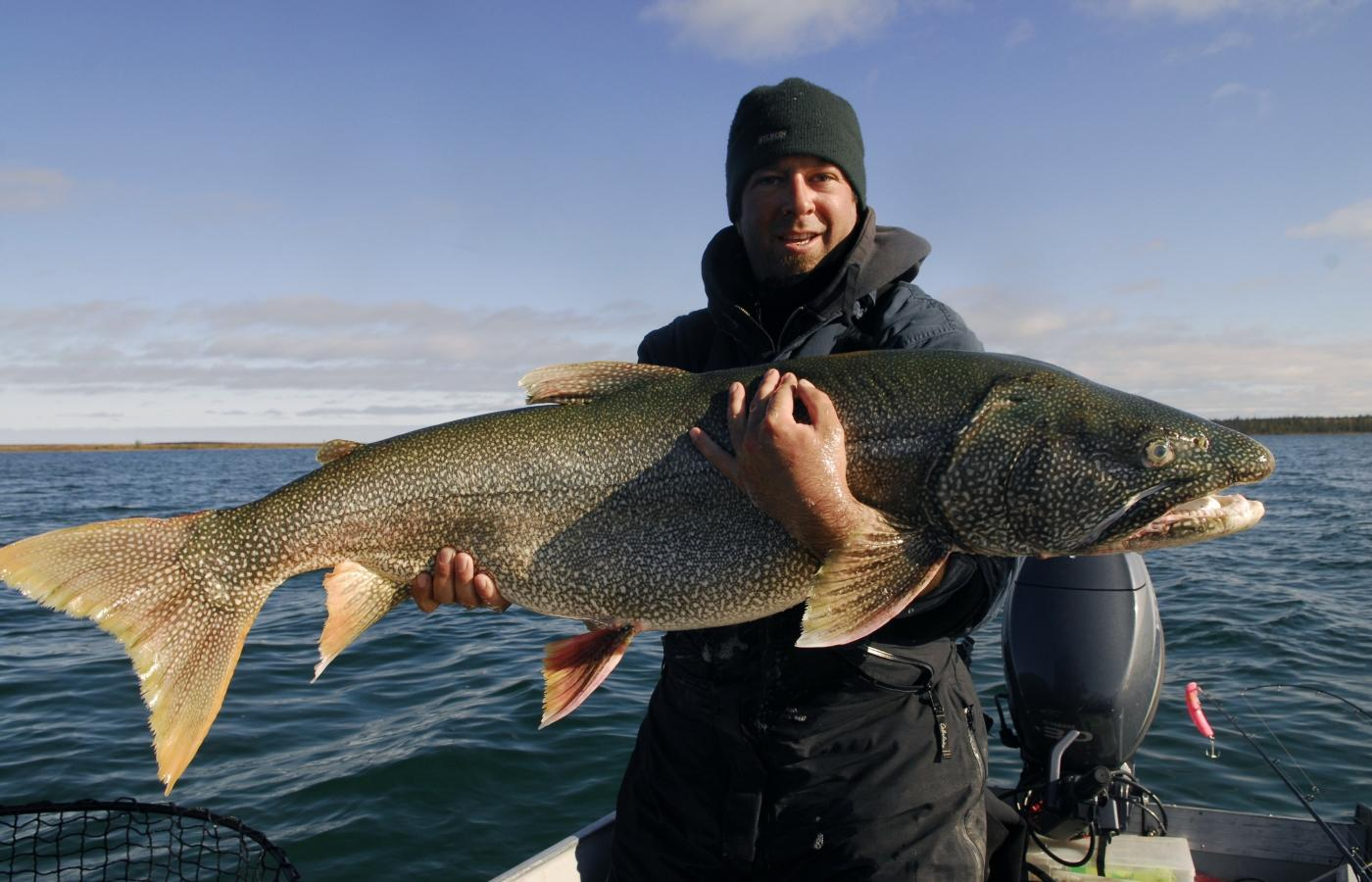 man holding giant lake trout catch and release