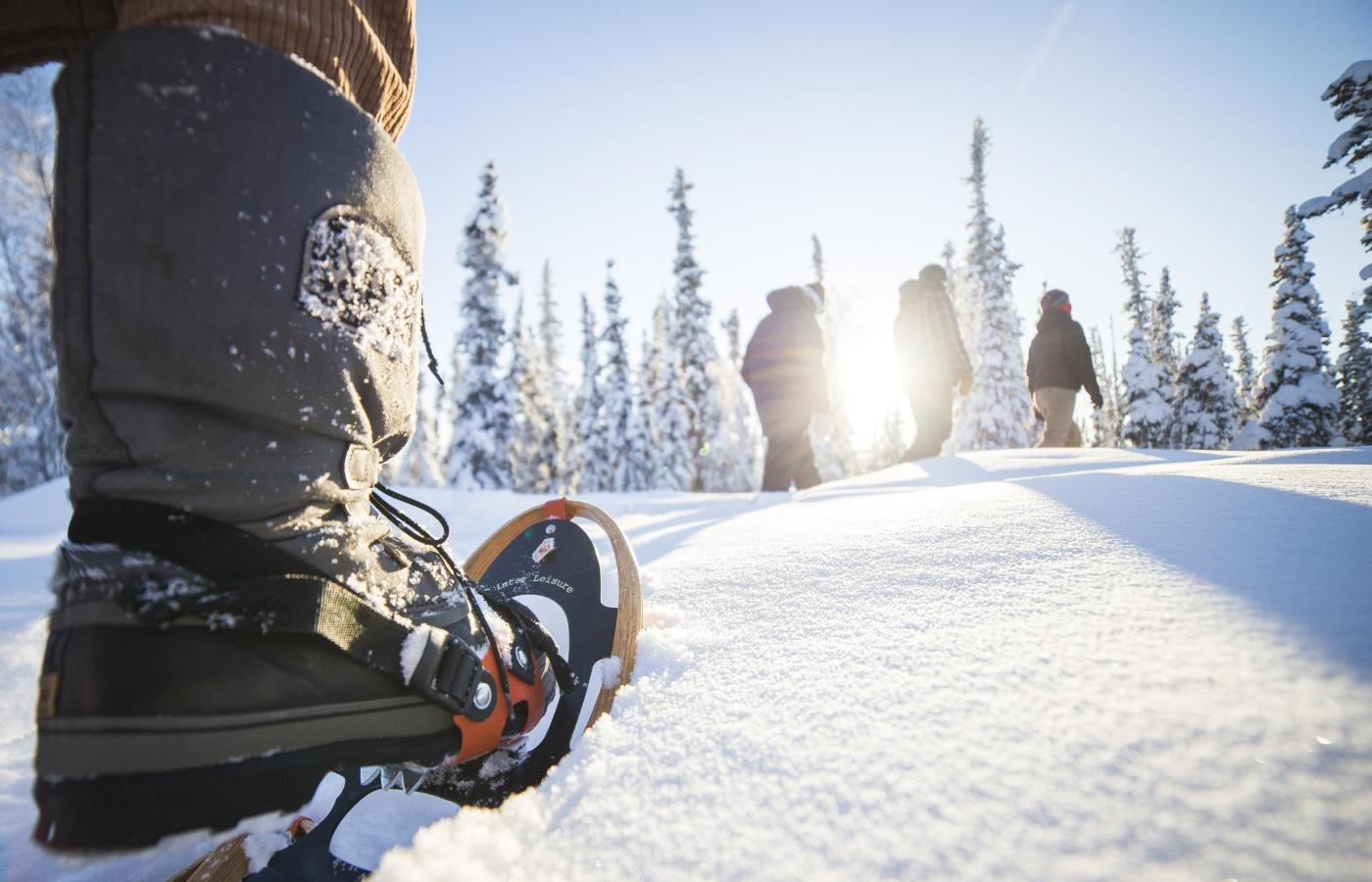 snowshoeing in the northwest territories