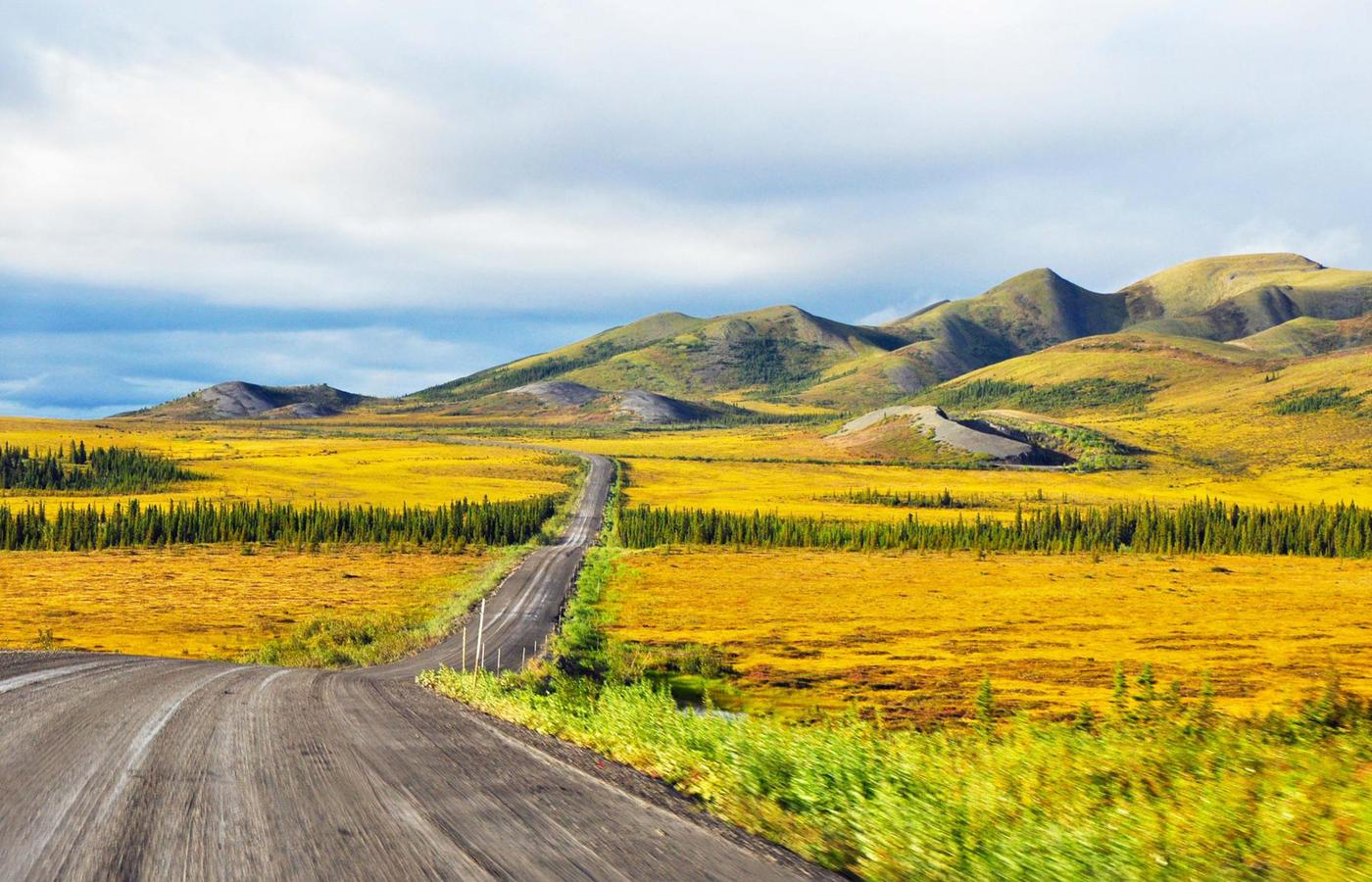 a seerene northwest territories fall landscape where the green grass has turned yellow