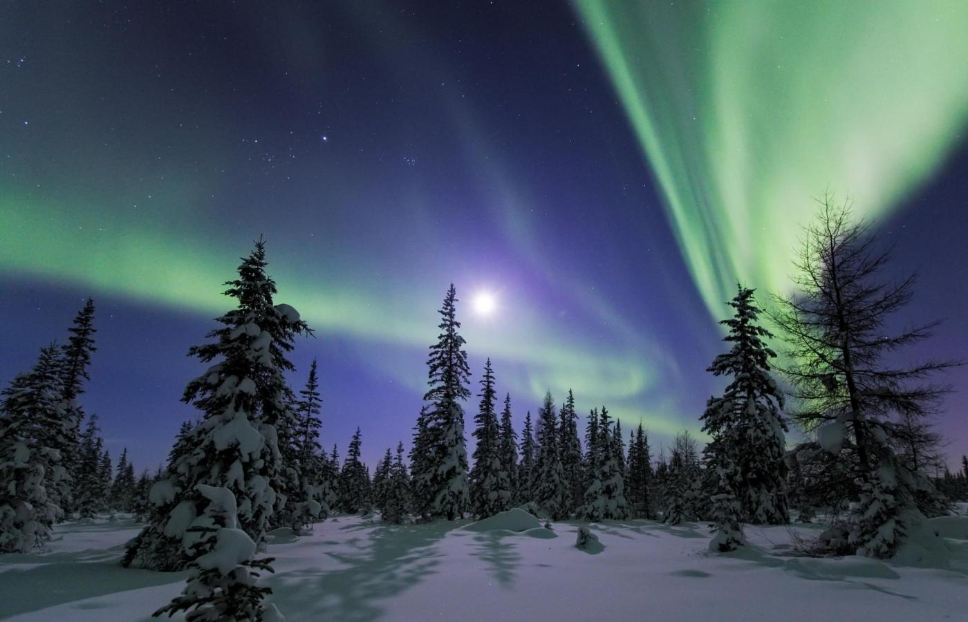The best Northern Lights ribbon across the sky in a picturesque part of the Northwest Territories