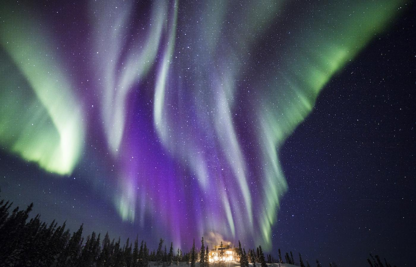 Purple aurora are less common than green, but still quite a regular sight above Canada's Northwest Territories