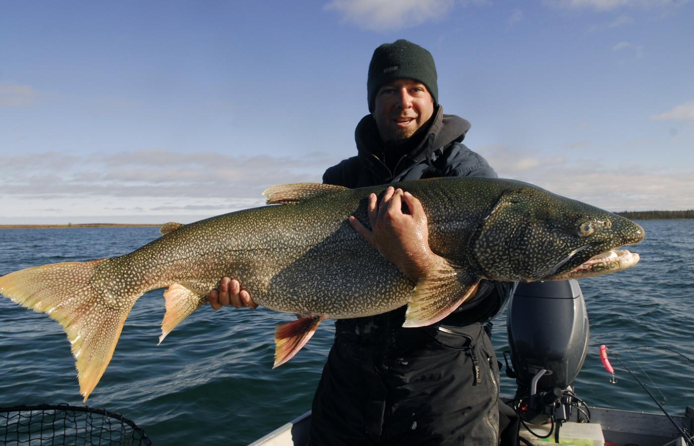 Man holding an impressive Lake Trout in the NWT