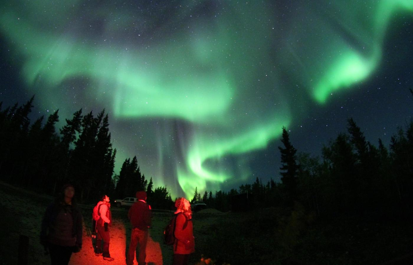 Aurora borealis over Fort Smith at the Dark Sky Festival in the NWT.