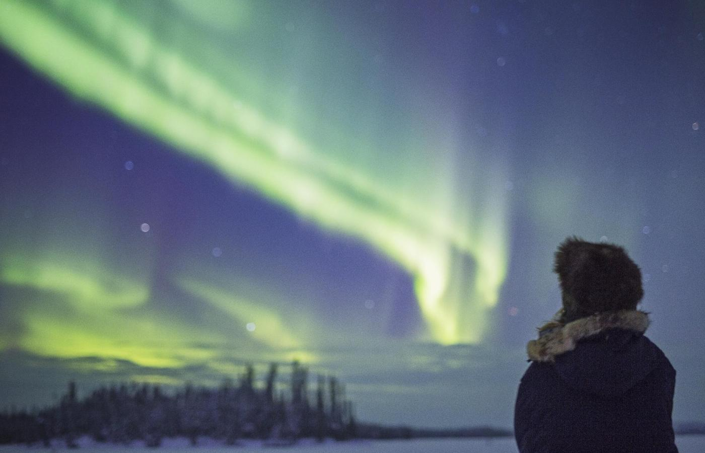 a person in winter gear watched the norther lights dance across the night sky.
