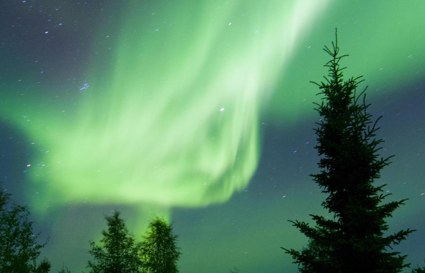 the green northern lights illuminate the northern sky