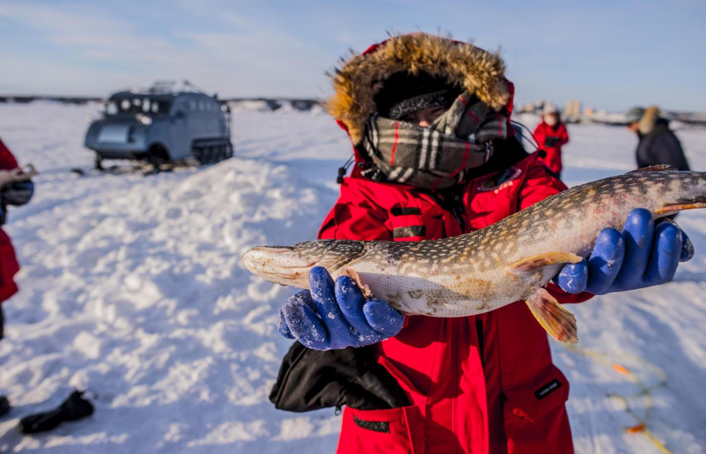 a woman holds up a pike after ice fishing on great slave lake