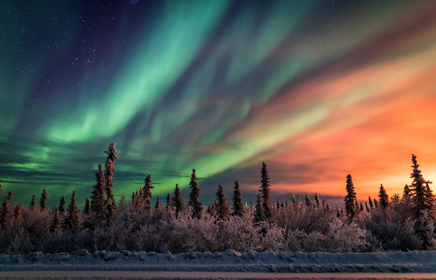 Billing colours of the Aurora in the sky along the Dempster highway in the Northwest Territoires. photo credit Kristian Binder