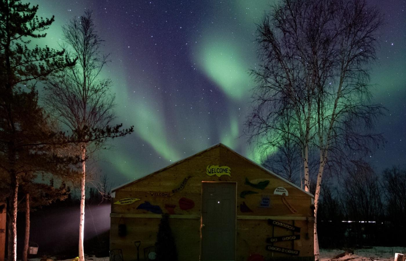 The Northern lights dance in the sky behind Bucket List Adventures cozy  cabin cozy outside of Yellowknife in the northwest territories