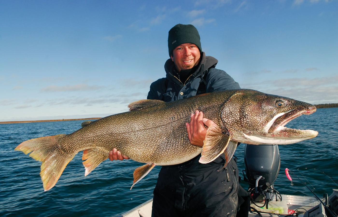 The lake trout are massive in Great Bear Lake in the NWT's Sahtu region.