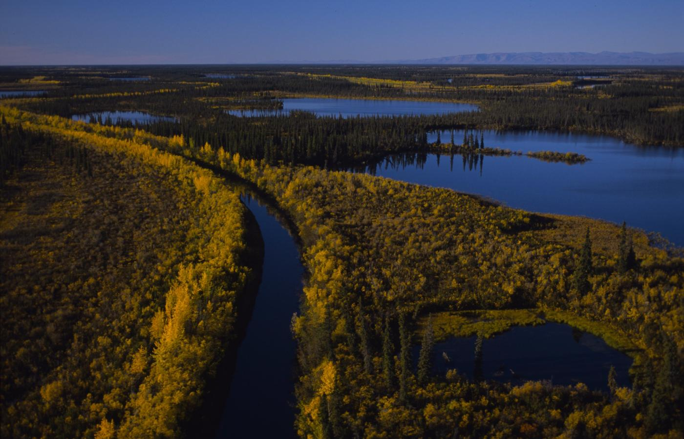 Aerial shot of Mackenzie River in the summer